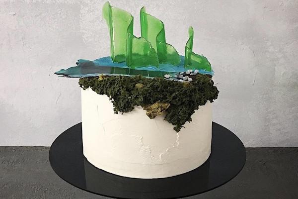 Торт Исландия Dashadaya